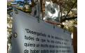 AUSENCIAS-Y-PRESENCIAS-IV-c.png